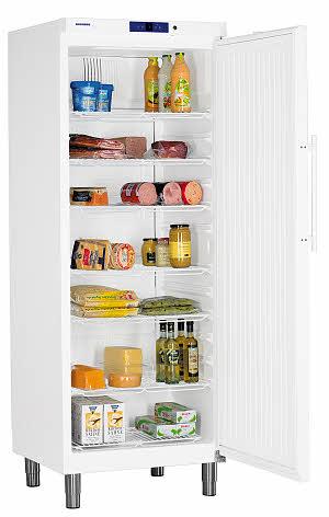Hladilnik za shranjevanje živil LIEBHERR GKv 6410