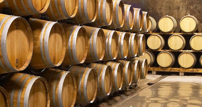 Hlajenje vinskih kleti